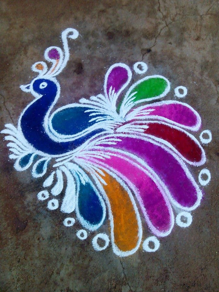 1 peacock rangoli design by mburadkar