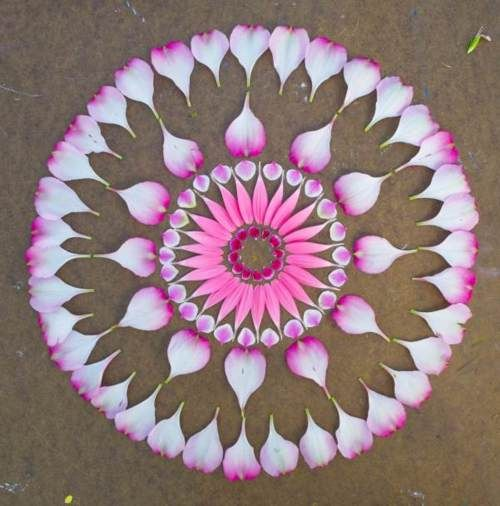 3 flower mandala rangoli design
