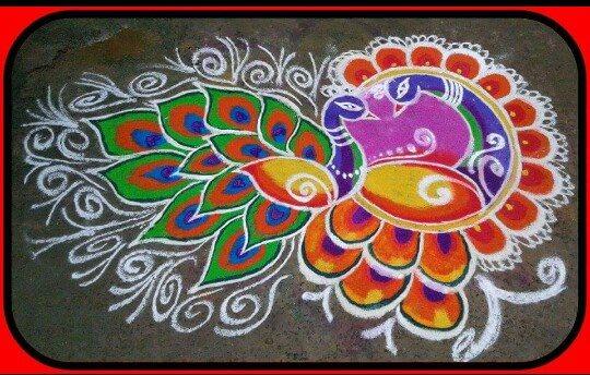 peacock rangoli design by madhana rajaguru